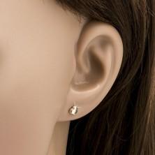 Zlati uhani - lesketajoče se srce pravilne oblike, gladka površina
