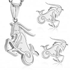 Komplet iz kirurškega jekla srebrne barve, obesek in uhani, zodiakalno znamenje KOZOROG