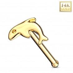 Raven piercing za nos iz 14-k rumenega zlata – sijoč delfinček